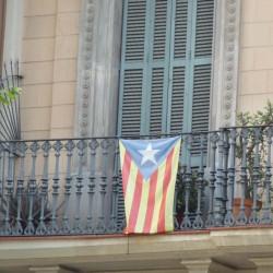 """Flag """"estelada"""""""